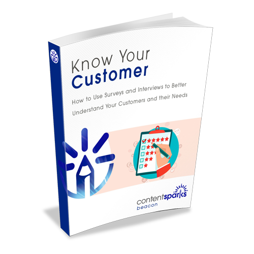 Know Your Customer with Surveys and Interviews